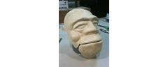 Celastic mask